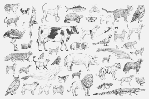 Illustration drawing style of animal collection Free Vector