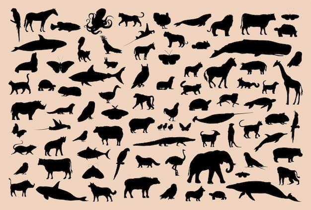 動物コレクションのイラストの描画スタイル Premiumベクター