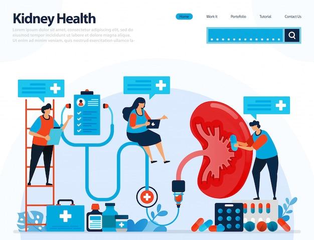 Иллюстрация для проверки здоровья почек. заболевания и расстройства почек. Premium векторы
