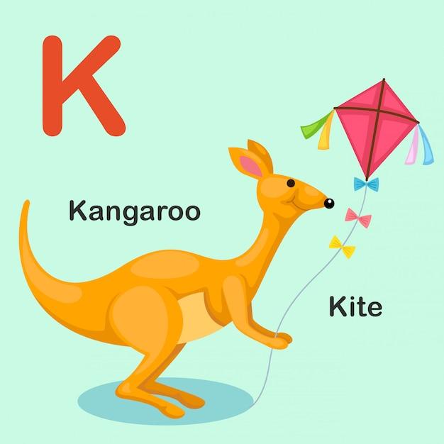 Illustration isolated animal alphabet letter k-kite,kangaroo Premium Vector