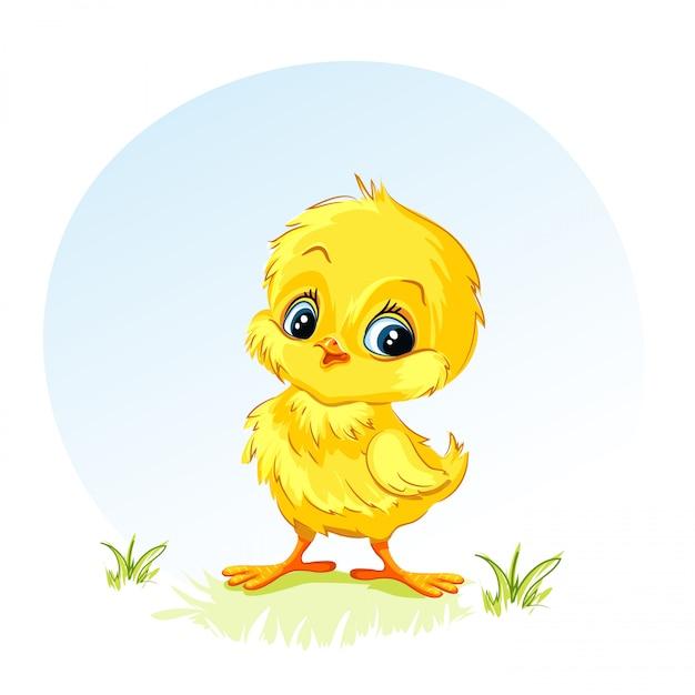 Иллюстрация молодой курицы Premium векторы