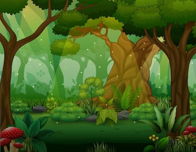Иллюстрация кустарников деревьев в лесу Premium векторы