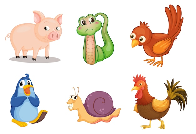 Illustration of collection of animals