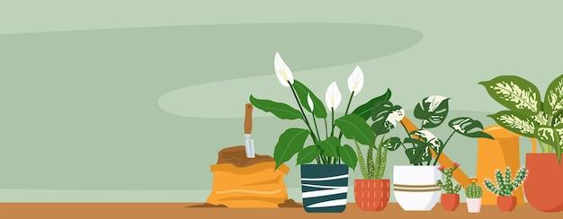 さまざまな屋内観葉植物のイラスト Premiumベクター