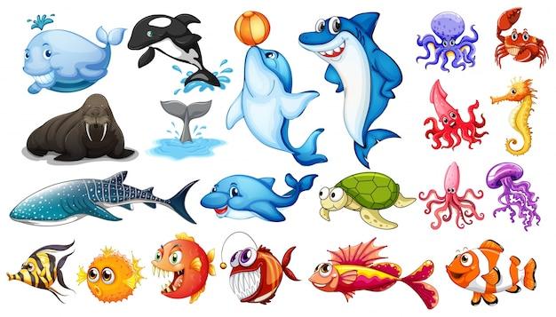 Иллюстрация различных видов морских животных Бесплатные векторы