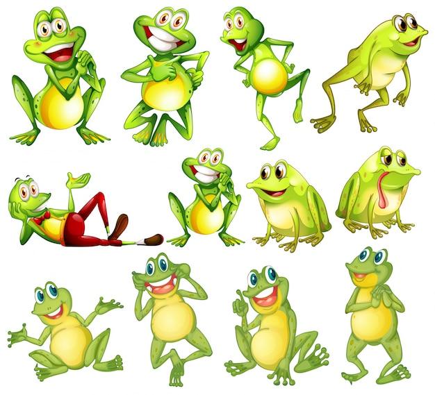 illustration of different positions of frogs vector premium download rh freepik com