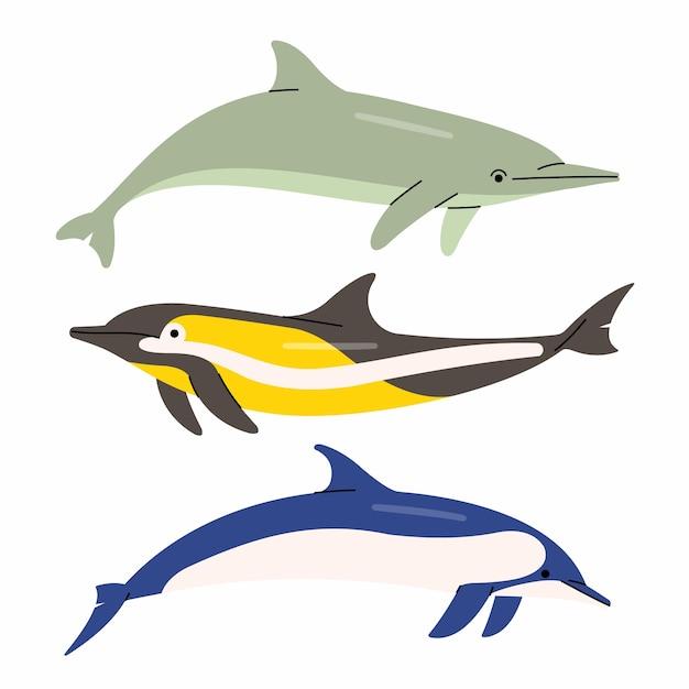 Иллюстрация дельфинов. белый фон. Premium векторы