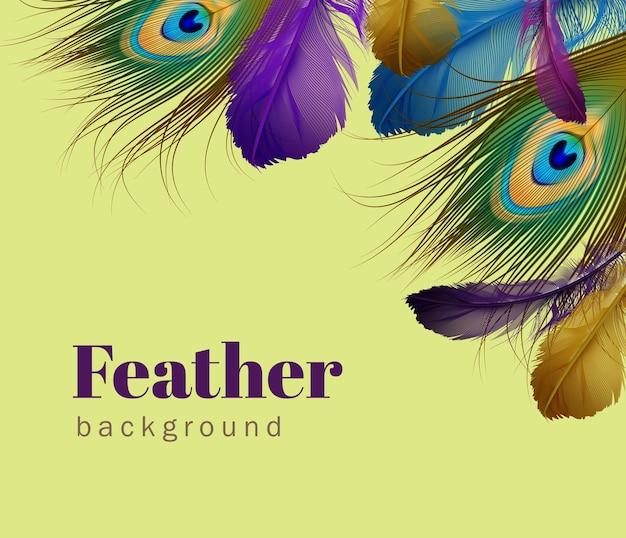 薄緑の背景にテキスト用のスペースを持つエキゾチックな羽のテンプレートのイラスト Premiumベクター