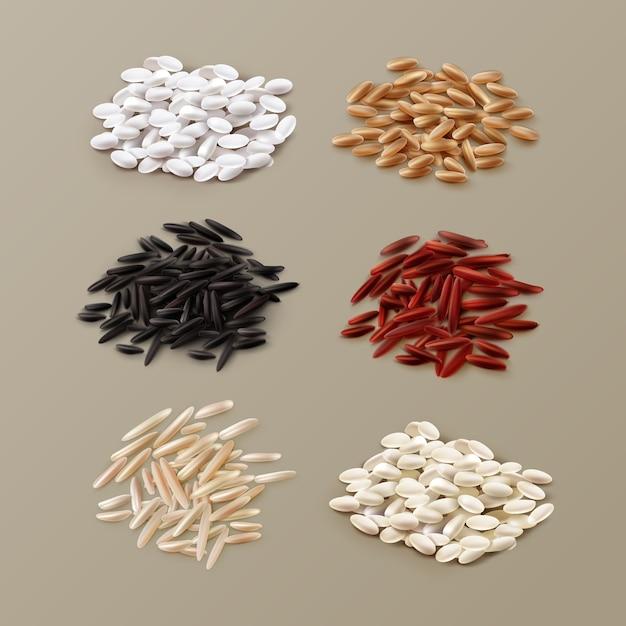 Иллюстрация кучи различных сортов риса, включая жасмин, басмати, дикий рис и пропаренный в красном, белом, коричневом и черном цвете на фоне Premium векторы