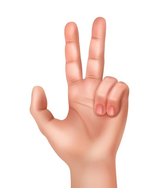 勝利のサインを示す現実的な人間の手のイラスト 無料ベクター