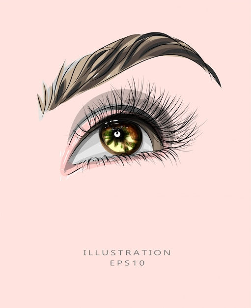 メイクと美容をテーマにしたイラスト。目と眉のメイク。 Premiumベクター