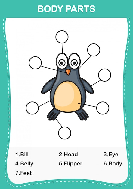Illustration of penguin vocabulary part of body,write the correct numbers of body parts.vector Premium Vector