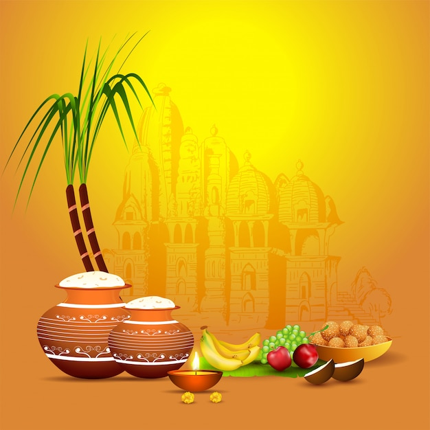 Illustration of rice mud pot with sugarcane, fruit, illuminated oil lamp (diya) and indian sweet (laddu) on yellow temple  for happy pongal celebration. Premium Vector