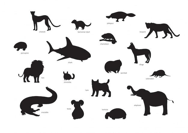 Иллюстрации, набор силуэтов животных мультфильм. гепард, тасманский дьявол, утконос, леопард, дикобраз, акула, хамелеон, динго, лев, шиншилла, вомбат, соленодон Premium векторы