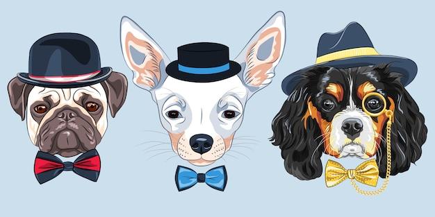 Иллюстрация набор мультяшных хипстерских собак Premium векторы