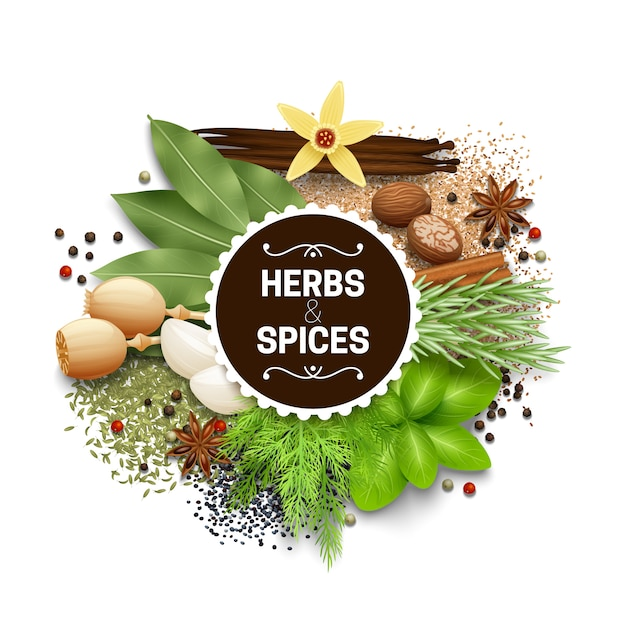 Illustration of set with different types of herbs and spices vector illustration Free Vector