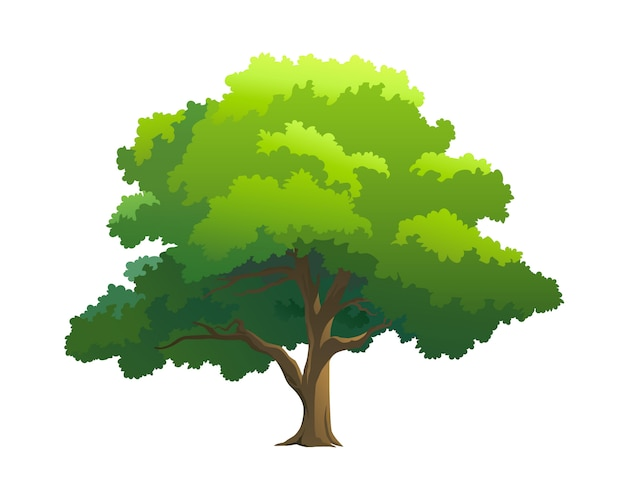 Illustration tree for cartoon Premium Vector