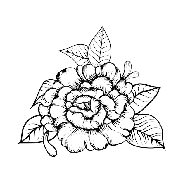 Premium Vector Illustration Vector Of Sketching Flower Coloring Book