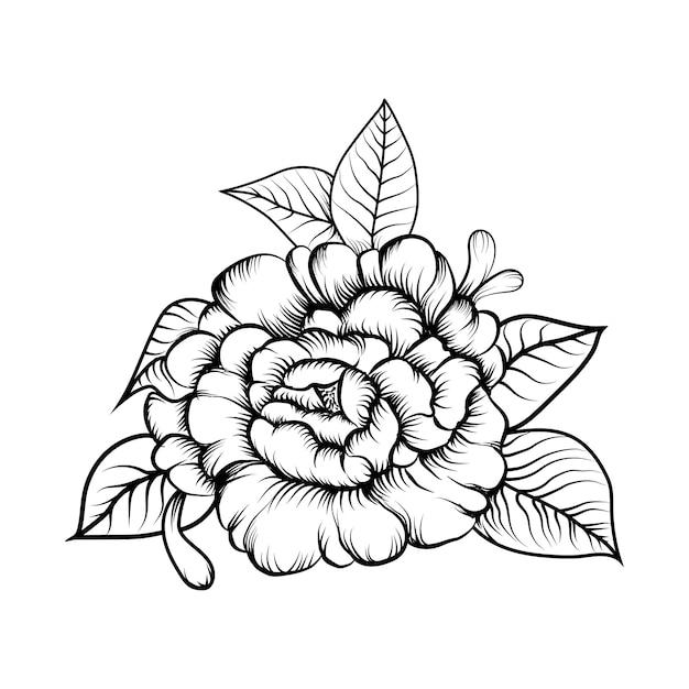 Premium Vector Illustration Vector Of Sketching Flower Coloring Book