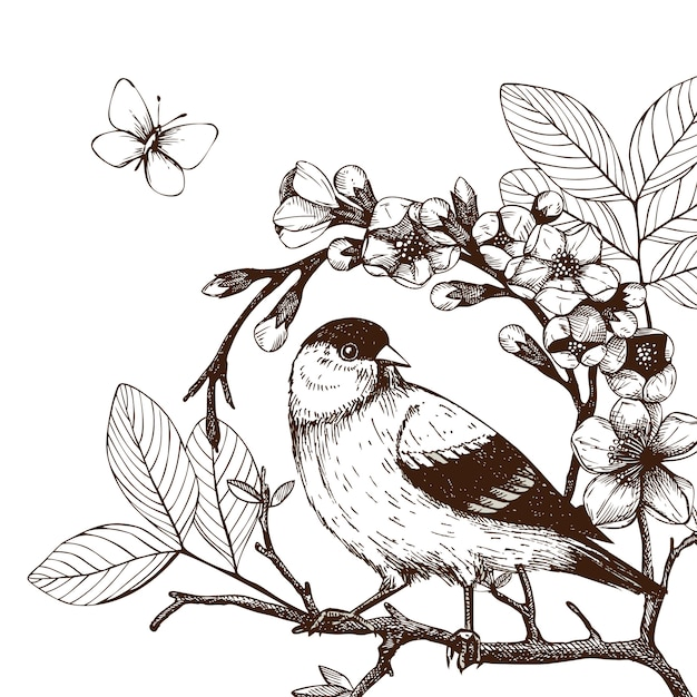 Illustration with hand draw bird on blooming tree twig. vintage sketch of  hand sketched bird Premium Vector