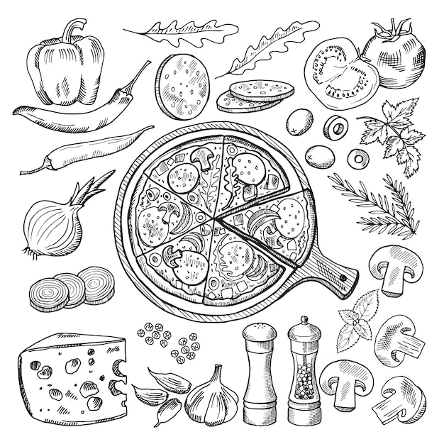 Illustrations of classical italian cuisine. pizza and different ingredients. fast food pictures set Premium Vector
