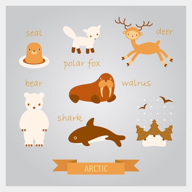 北極の動物のイラスト。鹿、セイウチ、アザラシ、サメ、ホッキョクギツネ Premiumベクター