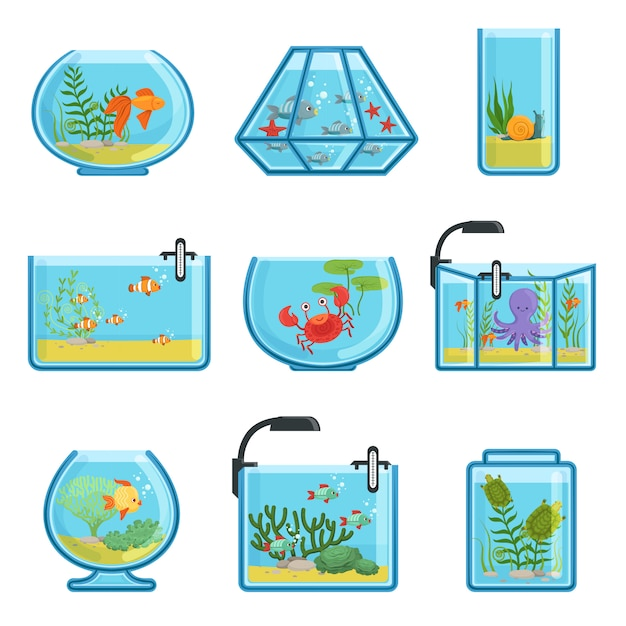 Illustrations set of different aquariums Premium Vector