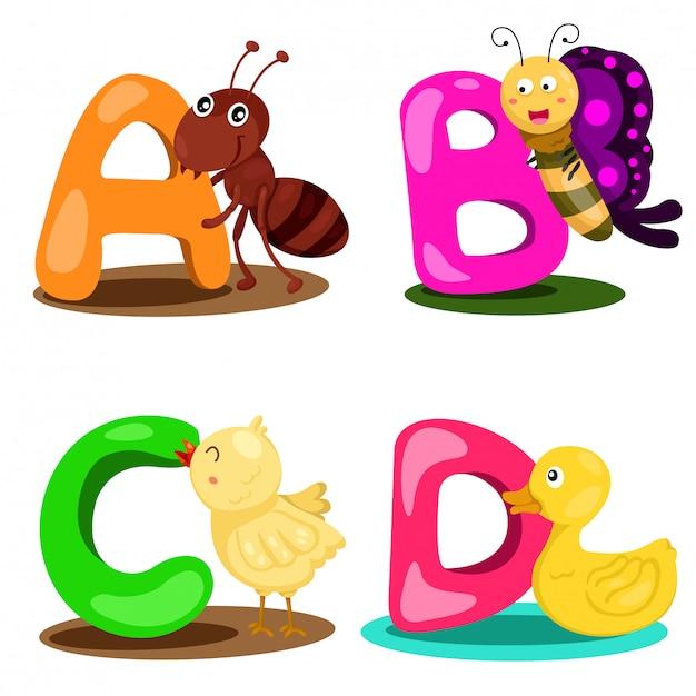 Illustrator alphabet animal letter - a,b,c,d Premium Vector