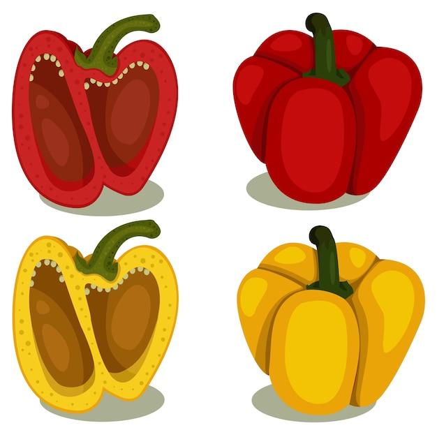 Illustrator of bell pepper two Premium Vector