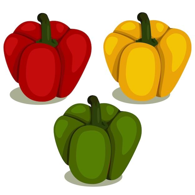 Illustrator of bell pepper Premium Vector