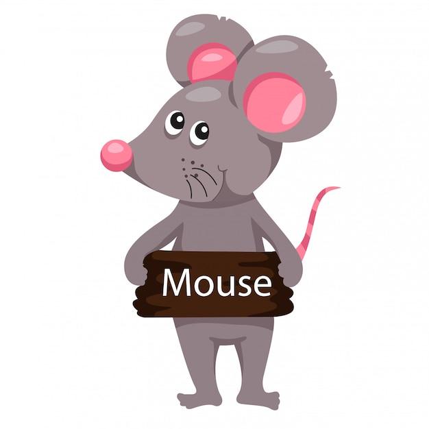 Illustrator of mouse animal Premium Vector