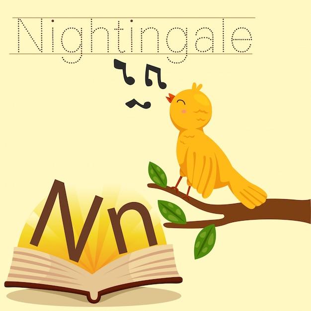 Illustrator of n for nightingale vocabulary Premium Vector