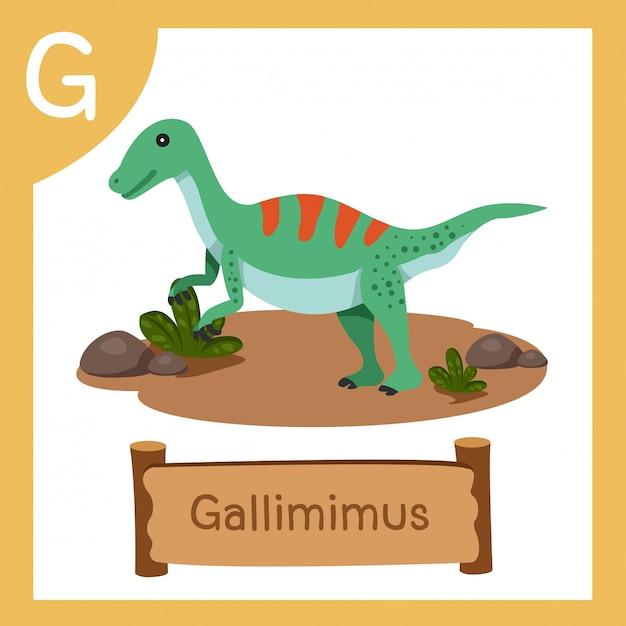 Gの恐竜ガリミムスのイラストレーター Premiumベクター