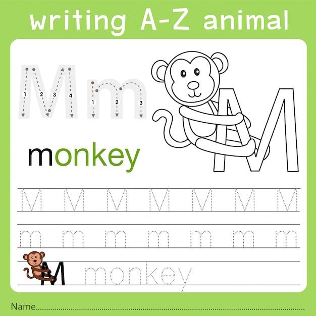 Z動物を書くイラストレーター Premiumベクター