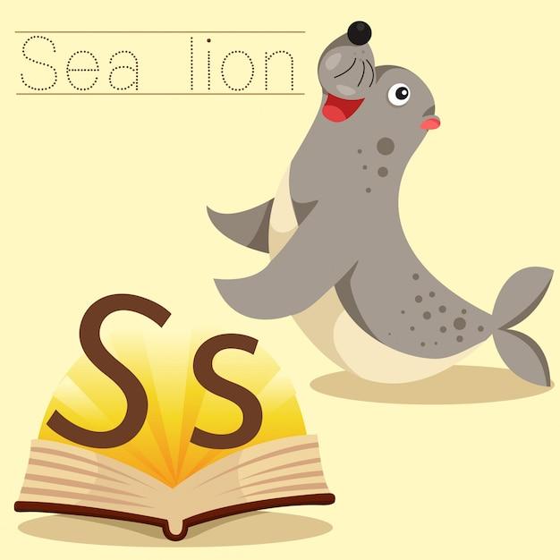 Illustrator of s for sea lion vocabulary Premium Vector