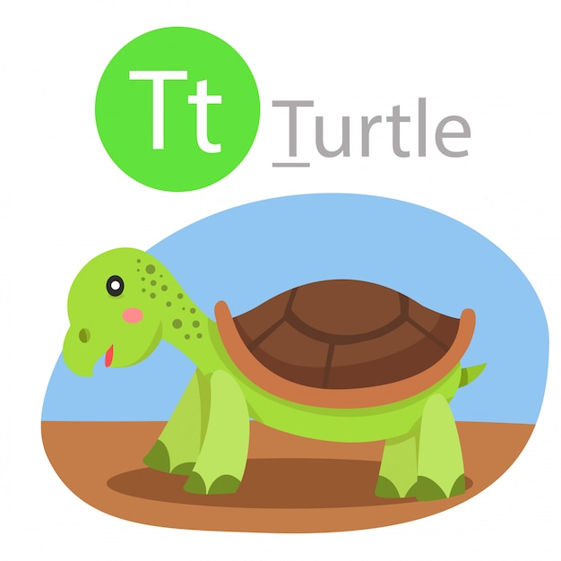 Illustrator of t for turtle animal Premium Vector