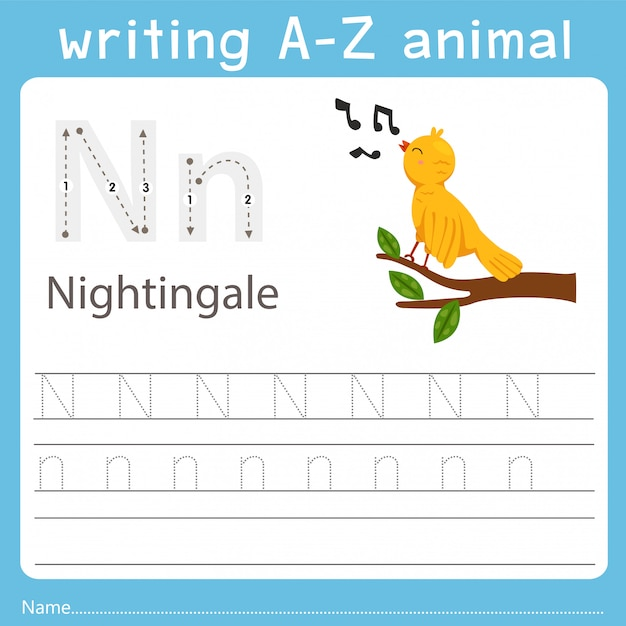 Illustrator writing a-z animal of nightingale Premium Vector