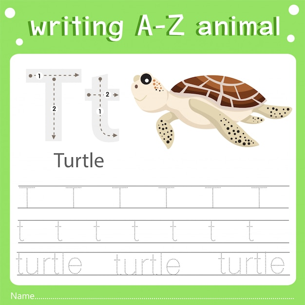 Illustrator of writing a-z animal t turtle Premium Vector