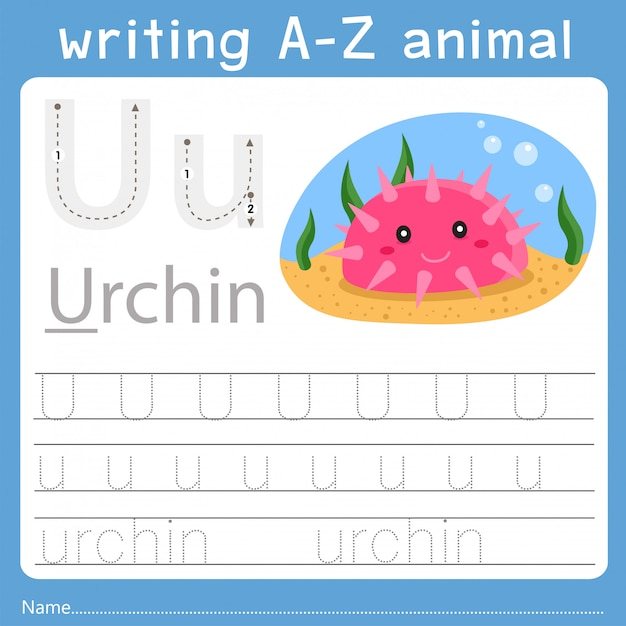 Illustrator of writing a-z animal u Premium Vector