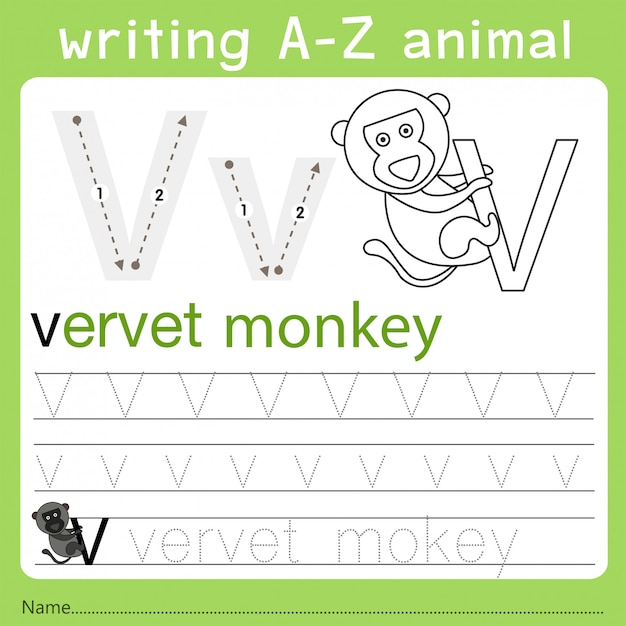Illustrator of writing a-z animal v Premium Vector