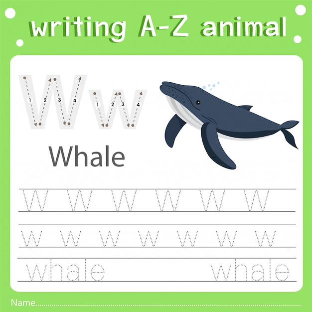 Illustrator of writing a-z animal w whale Premium Vector