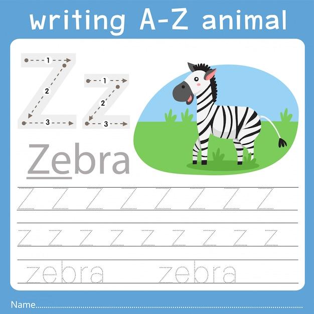 Illustrator of writing a-z animal z Premium Vector