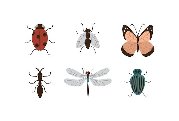 さまざまな昆虫や庭の植物の害虫の画像セットは、白い背景でフラットに分離されました。蝶とバグの漫画のアイコンまたはシンボルのコレクション。 Premiumベクター