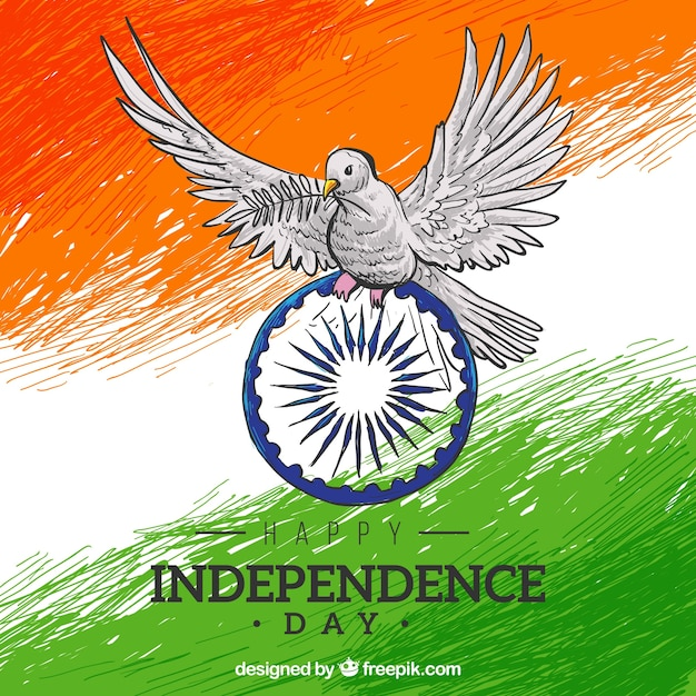 Indian flag background hand painted with a dove