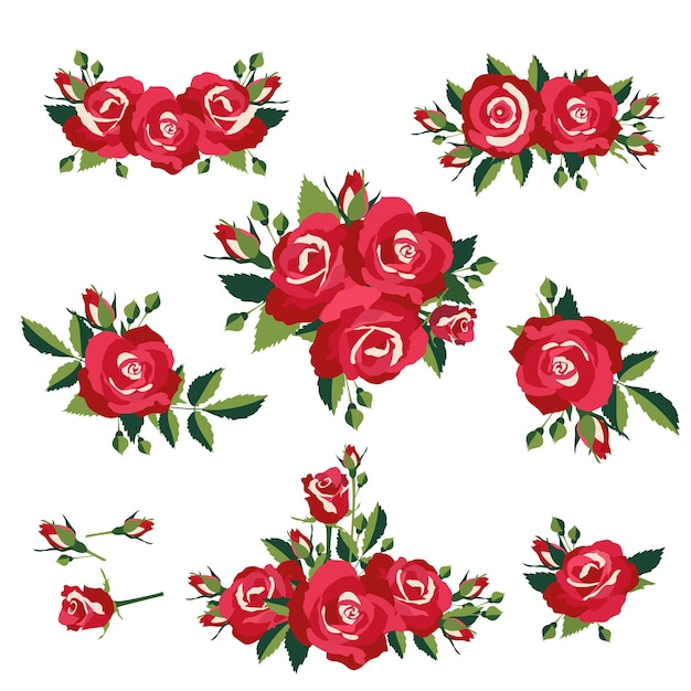Infiorescenza o mazzi di rose illustrazione vettoriale Vettore gratuito
