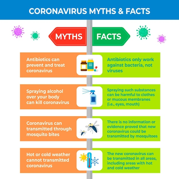 Infographic about coronavirus myths and facts Free Vector