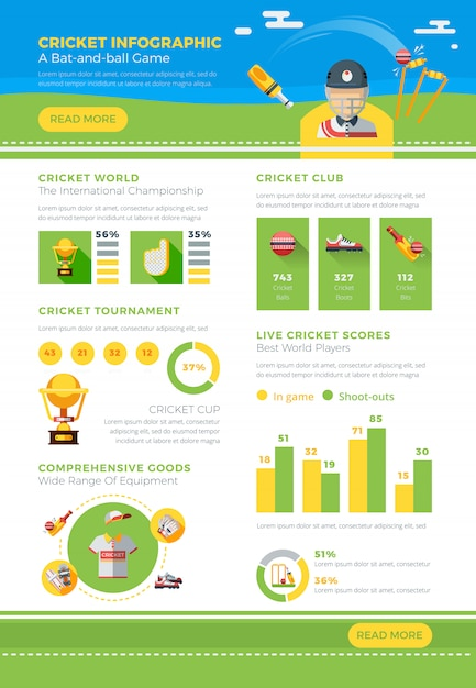 Infographic cricket poster Free Vector