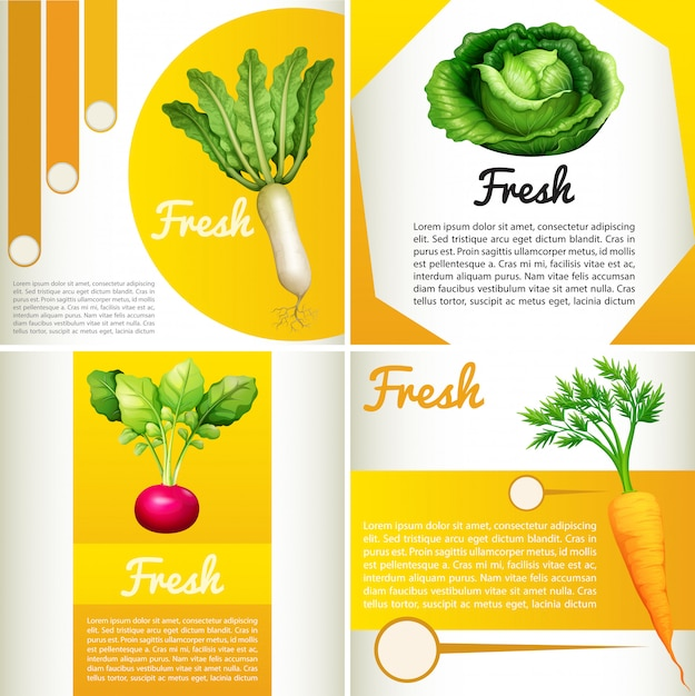 Infographic diagram with fresh vegetables Free Vector