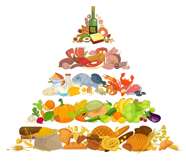 Infographic of food pyramid healthy eating. Premium Vector