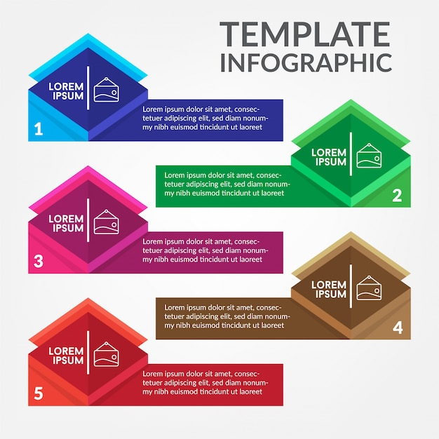 Infographic Template Modern Premium Vector